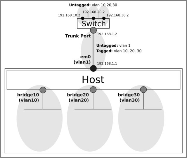 Create bridges (vlans)