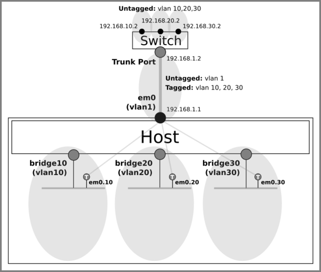Assign tagged ports to vlans
