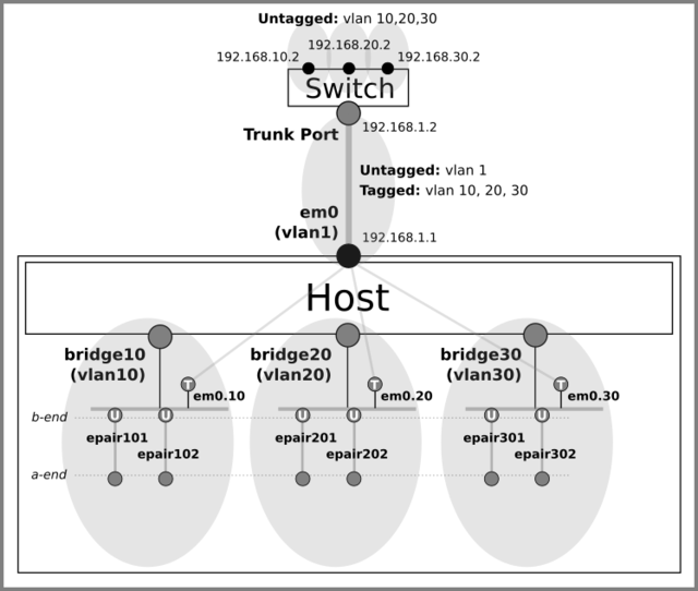 Assign untagged ports to vlans